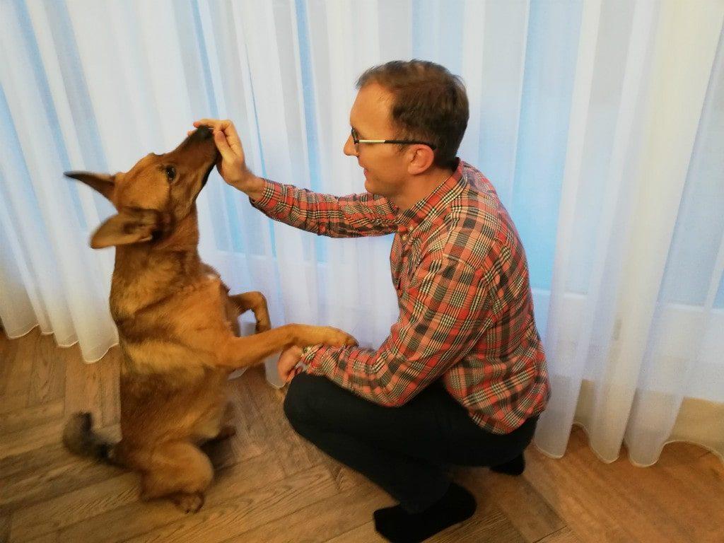 Pies Misiek iMarcin Iwuć