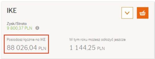 Wyniki IKE Plus - zrzut ekranu zsystemu, Marcin Iwuć